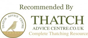 recommended-by-thatch-advice-center